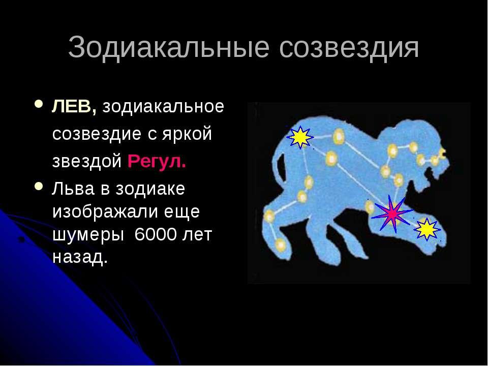 Зодиакальные созвездия ЛЕВ, зодиакальное созвездие с яркой звездой Регул. Льв...