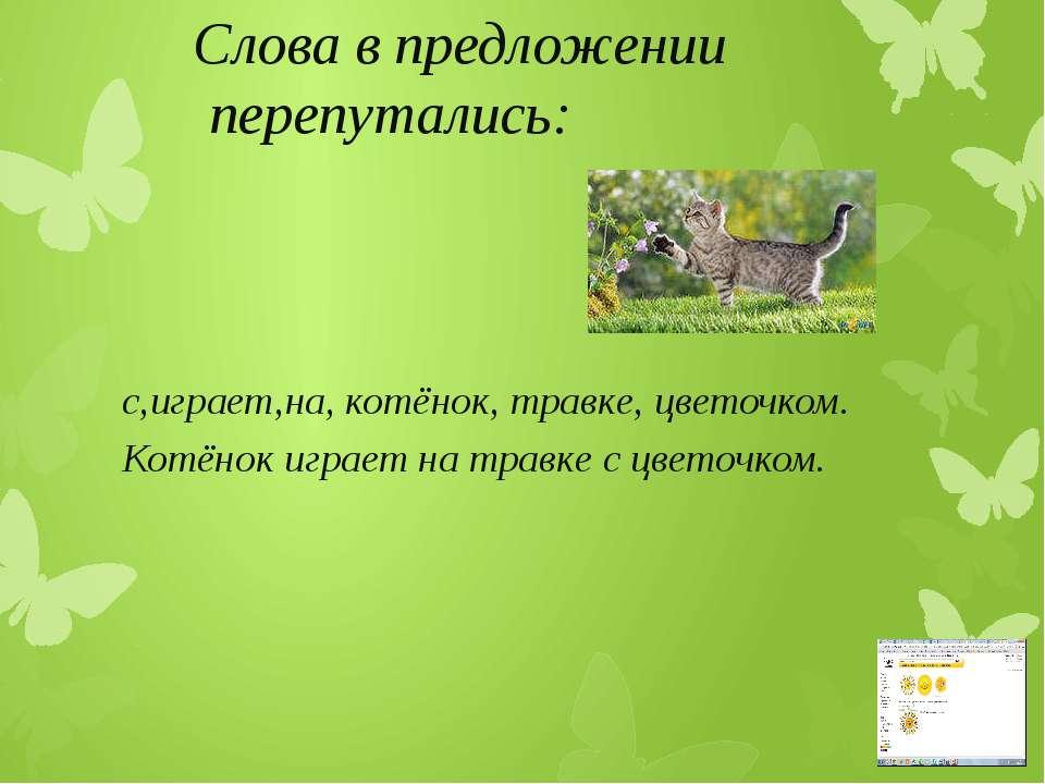 Слова в предложении перепутались: с,играет,на, котёнок, травке, цветочком. Ко...