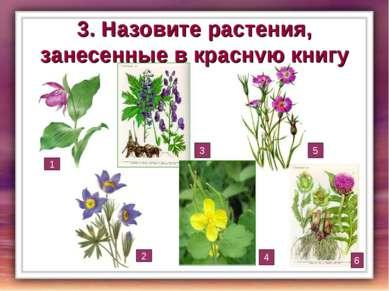 3. Назовите растения, занесенные в красную книгу 1 2 3 4 5 6