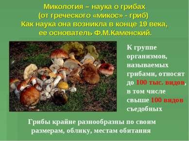 Микология – наука о грибах (от греческого «микос» - гриб) Как наука она возни...