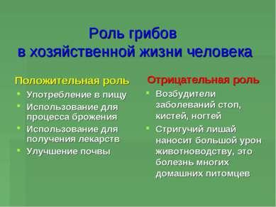 Роль грибов в хозяйственной жизни человека Положительная роль Употребление в ...