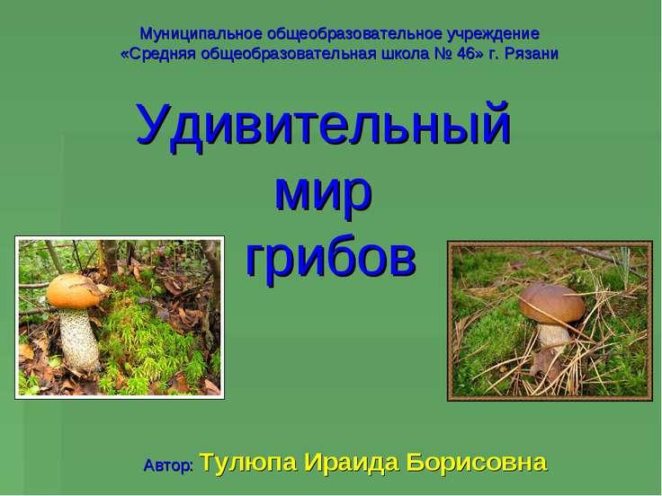 Удивительный мир грибов Муниципальное общеобразовательное учреждение «Средняя...