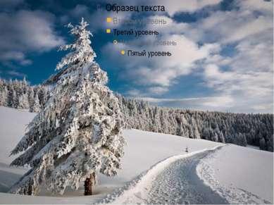 Скрипичный концерт «Времена года» Весна Лето Осень Зима
