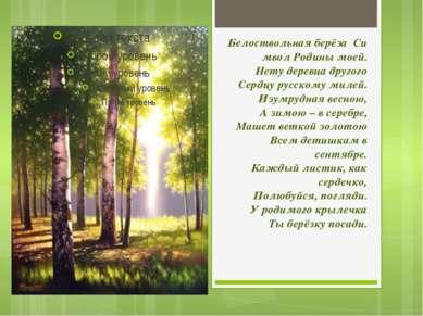 БелоствольнаяберёзаСимвол Родины моей. Нету деревца другого Сердцу русском...
