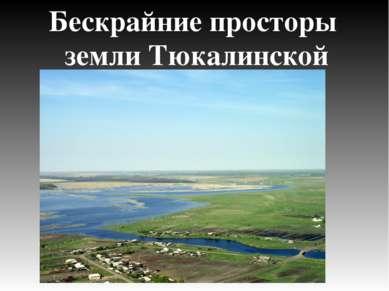 Бескрайние просторы земли Тюкалинской