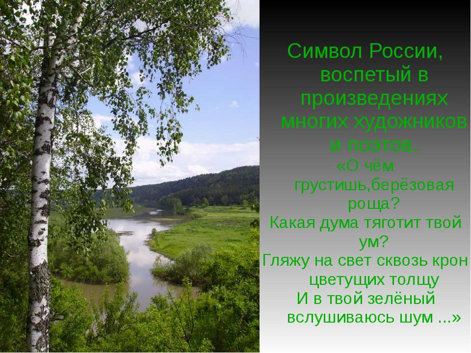 Символ России, воспетый в произведениях многих художников и поэтов. «О чём гр...