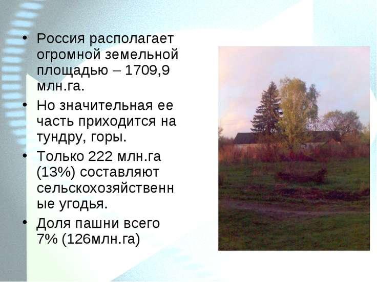 Россия располагает огромной земельной площадью – 1709,9 млн.га. Но значительн...