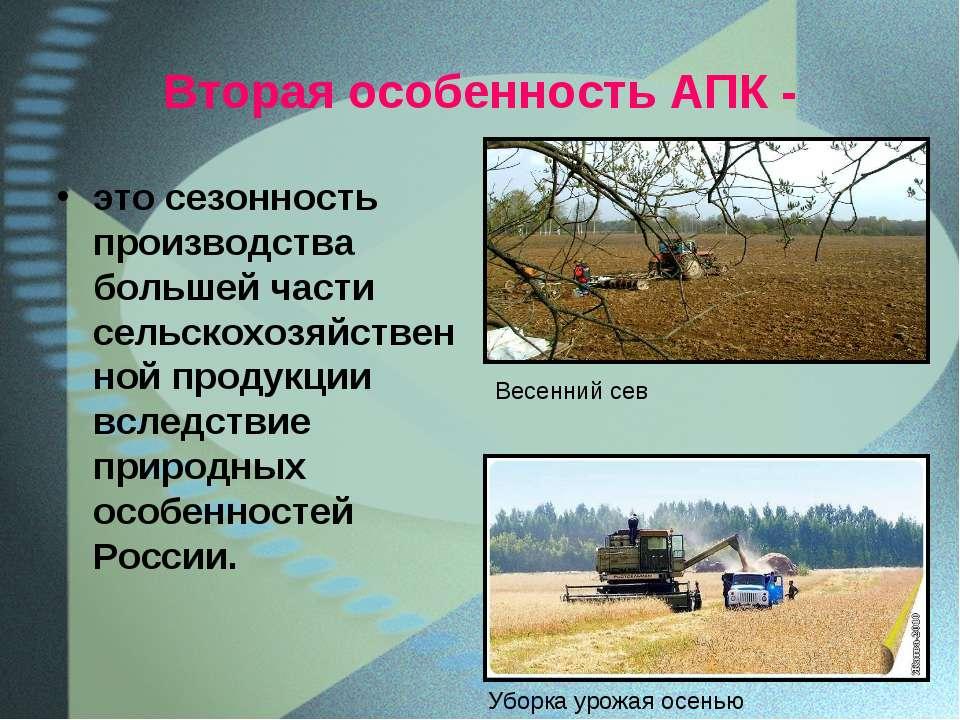 Вторая особенность АПК - это сезонность производства большей части сельскохоз...