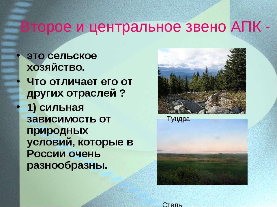 Второе и центральное звено АПК - это сельское хозяйство. Что отличает его от ...