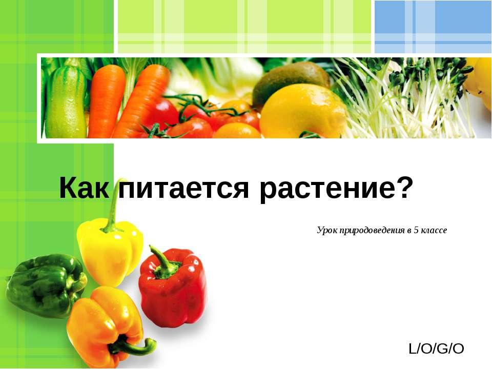 Урок природоведения в 5 классе Как питается растение? L/O/G/O