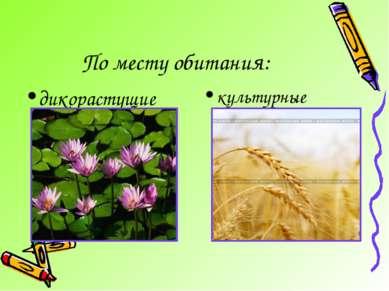 По месту обитания: дикорастущие культурные