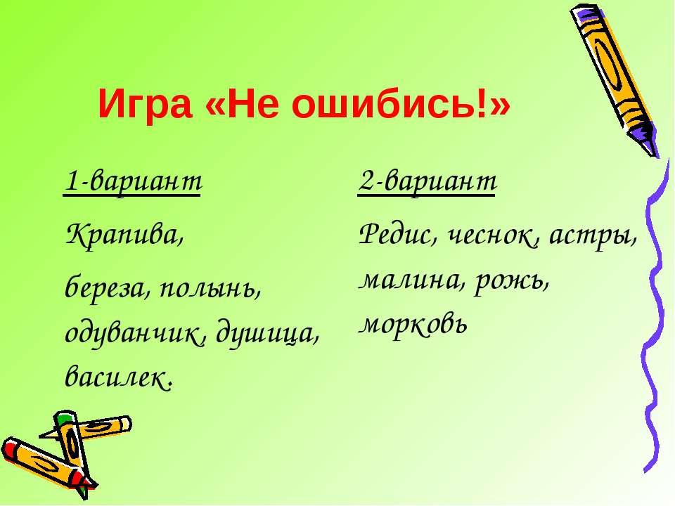 Игра «Не ошибись!» 1-вариант Крапива, береза, полынь, одуванчик, душица, васи...