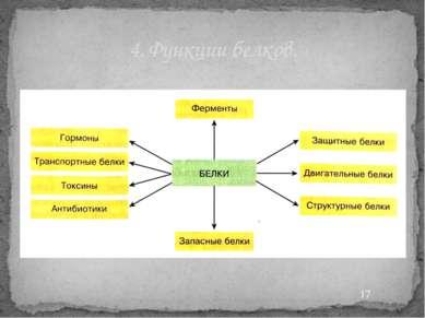 4. Функции белков.