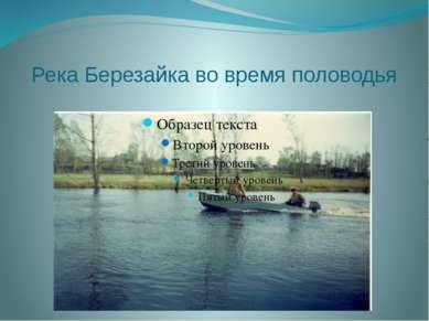 Река Березайка во время половодья