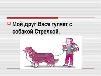 Мой друг Вася гуляет с собакой Стрелкой.