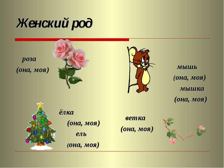Женский род роза (она, моя) мышь (она, моя) мышка (она, моя) ёлка (она, моя) ...