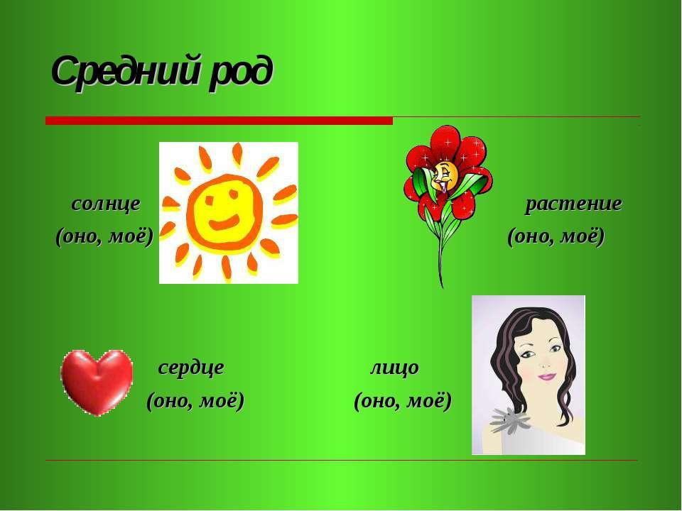 Средний род солнце (оно, моё) сердце (оно, моё) лицо (оно, моё) растение (оно...