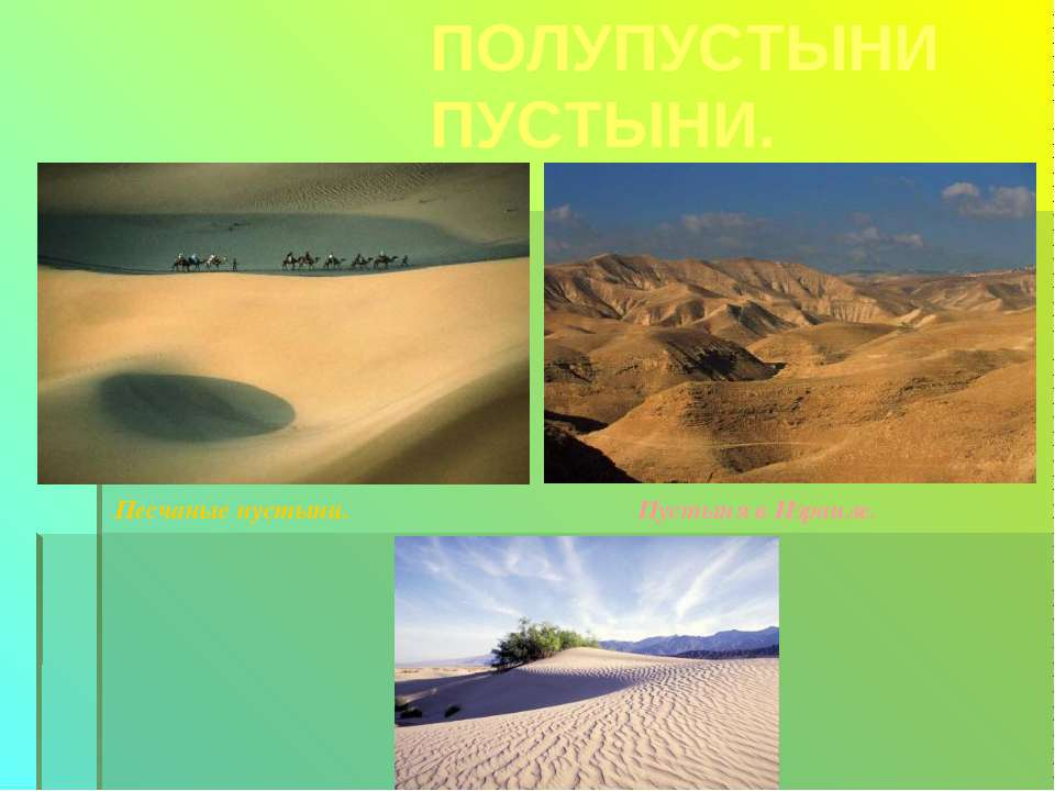 ПОЛУПУСТЫНИ ПУСТЫНИ. Песчаные пустыни. Пустыня в Израиле.
