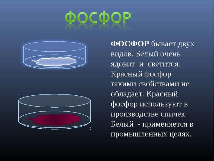 ФОСФОР бывает двух видов. Белый очень ядовит и светится. Красный фосфор таким...