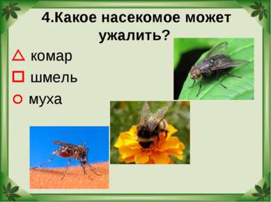 4.Какое насекомое может ужалить? комар шмель муха