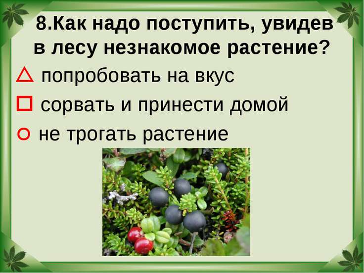 8.Как надо поступить, увидев в лесу незнакомое растение? попробовать на вкус ...
