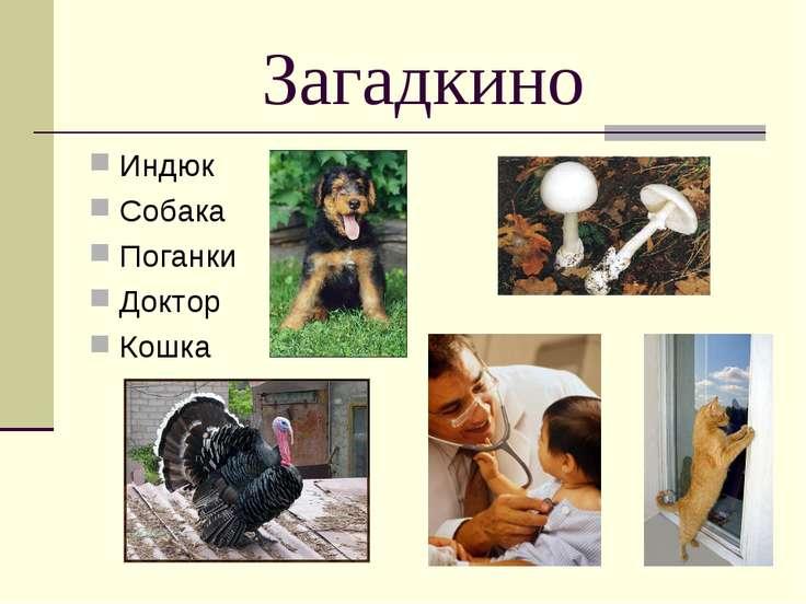 * Загадкино Индюк Собака Поганки Доктор Кошка
