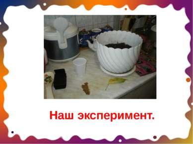 Наш эксперимент.