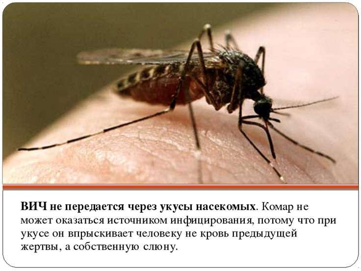ВИЧ не передается через укусы насекомых. Комар не может оказаться источником ...