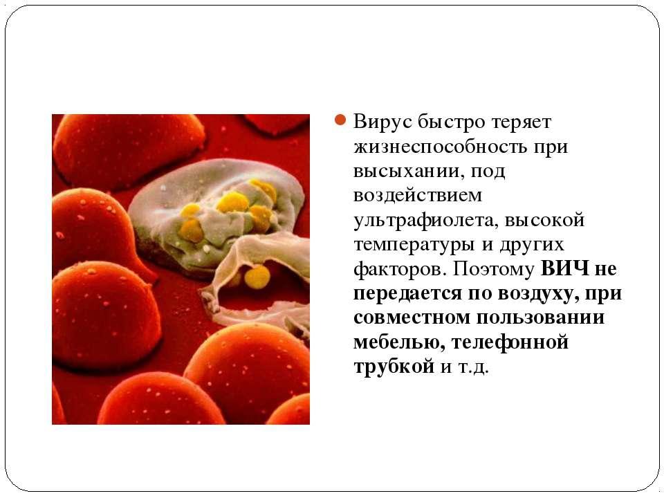 Вирус быстро теряет жизнеспособность при высыхании, под воздействием ультрафи...