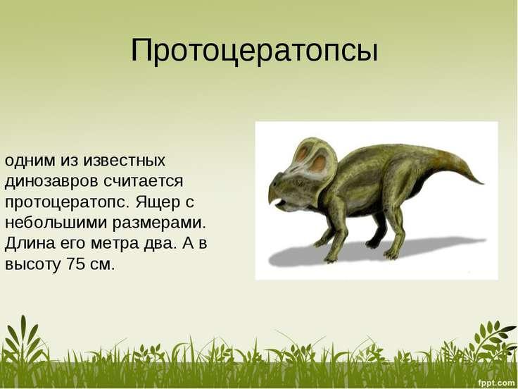 Протоцератопсы одним из известных динозавров считается протоцератопс. Ящер с ...