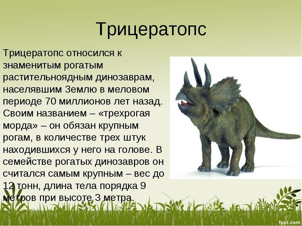 Трицератопс Трицератопс относился к знаменитым рогатым растительноядным диноз...