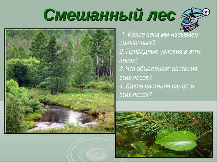 Смешанный лес 1. Какие леса мы называем смешанные? 2. Природные условия в эти...