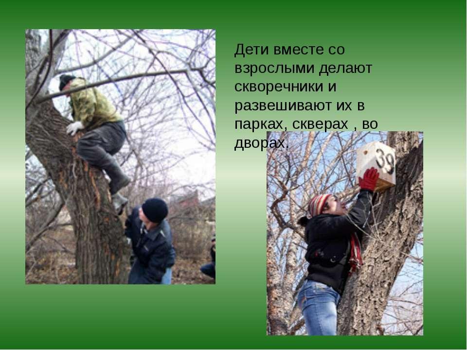 Дети вместе со взрослыми делают скворечники и развешивают их в парках, сквера...