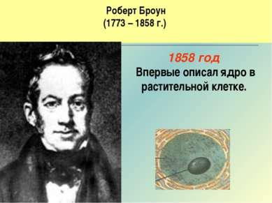 Роберт Броун (1773 – 1858 г.) 1858 год Впервые описал ядро в растительной кле...
