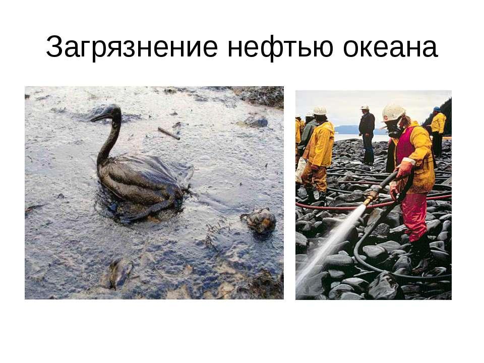 Загрязнение нефтью океана