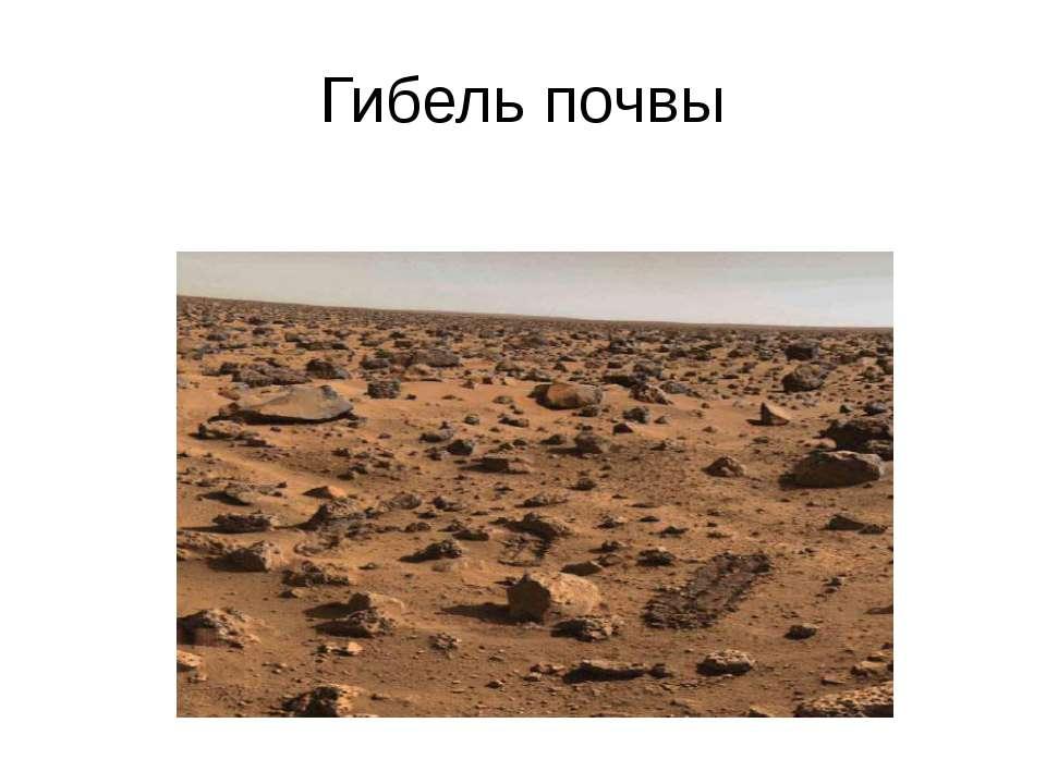 Гибель почвы