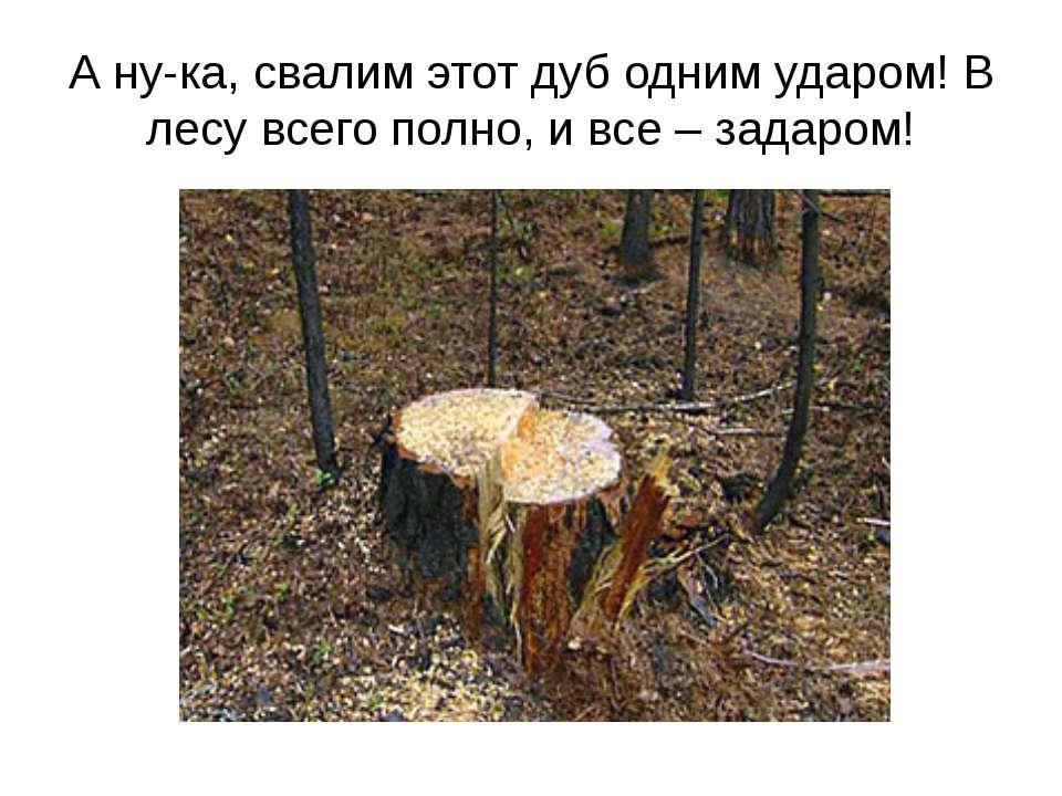 А ну-ка, свалим этот дуб одним ударом! В лесу всего полно, и все – задаром!