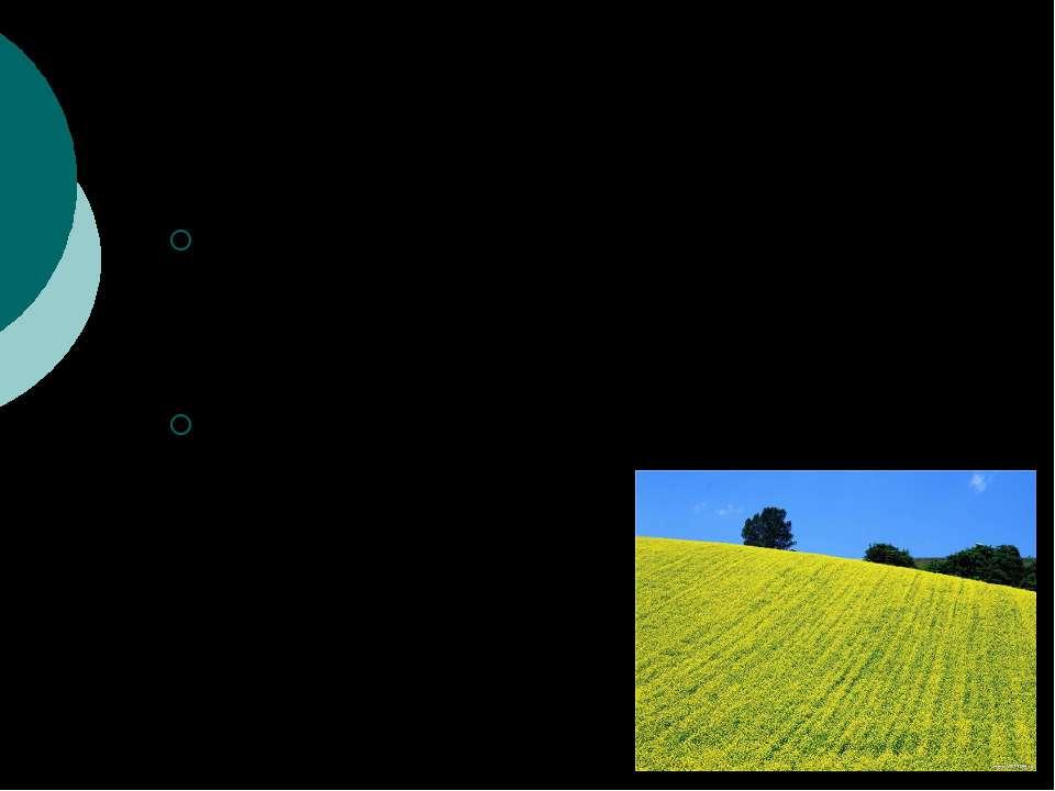 концепция моноклимакса концепция поликлимакса
