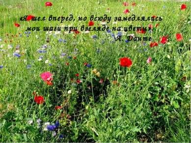«Я шел вперед, но всюду замедлялись мои шаги при взгляде на цветы». А. Данте