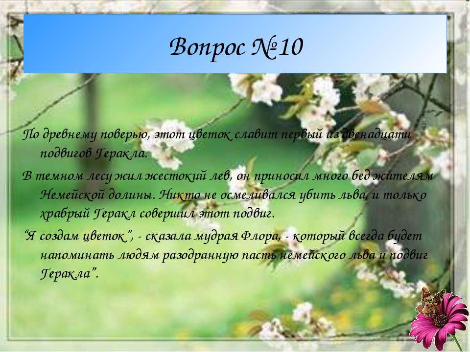 Вопрос № 10 По древнему поверью, этот цветок славит первый из двенадцати подв...