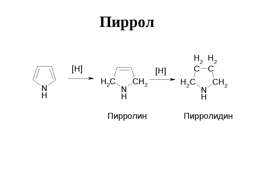 Пиррол Пирролин Пирролидин