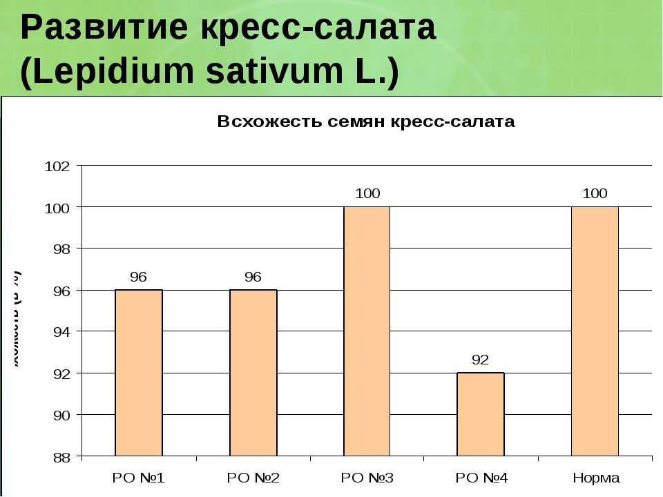 Развитие кресс-салата (Lepidium sativum L.)