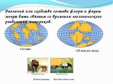 Сегодня 135 млн.лет назад Различия или сходства состава флоры и фауны могут б...