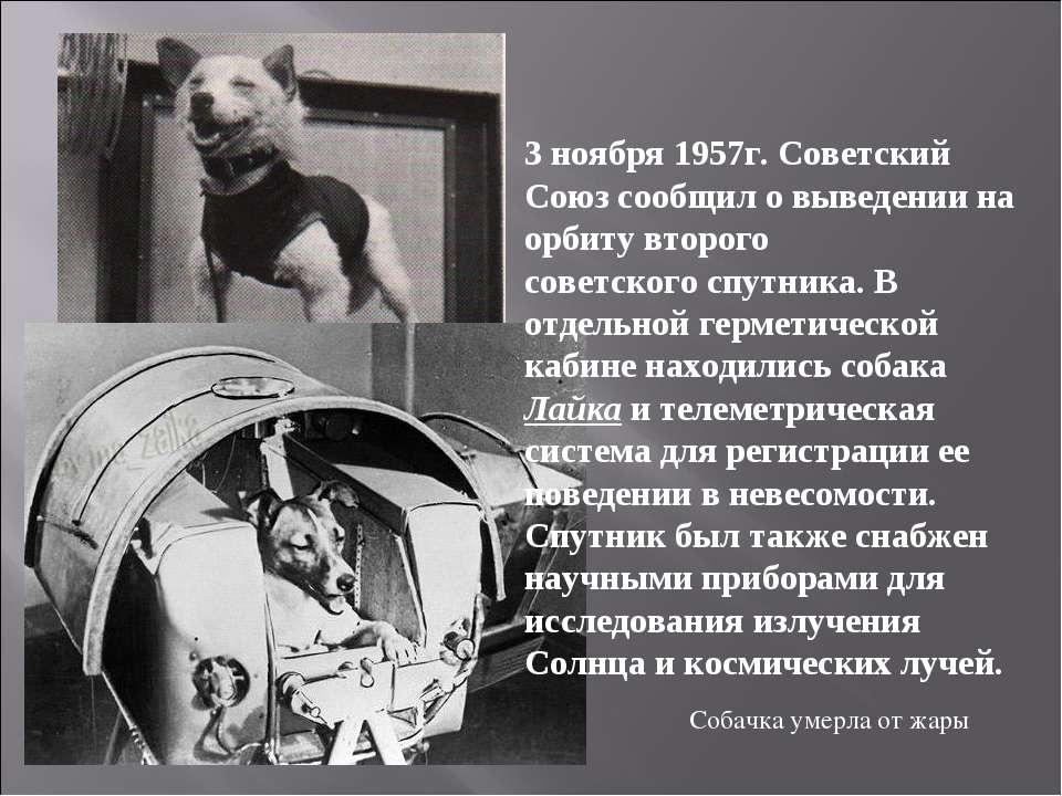 3 ноября 1957г. Советский Союз сообщил о выведении на орбиту второго советско...