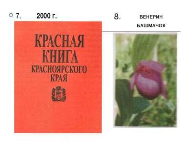 7. 2000 г. 8. ВЕНЕРИН БАШМАЧОК