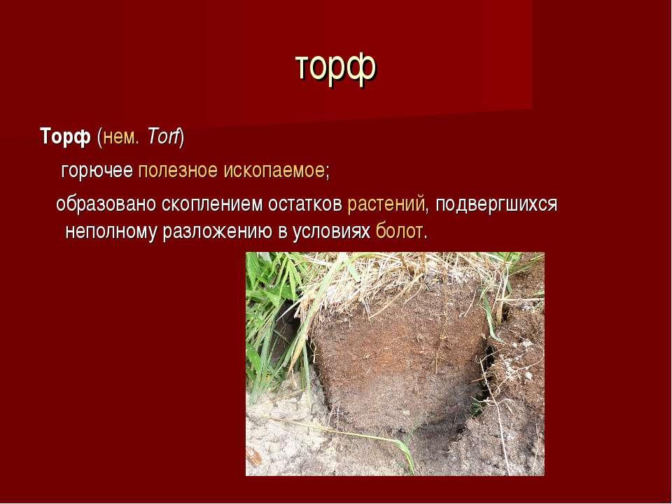 торф Торф (нем.Torf) горючее полезное ископаемое; образовано скоплением ост...