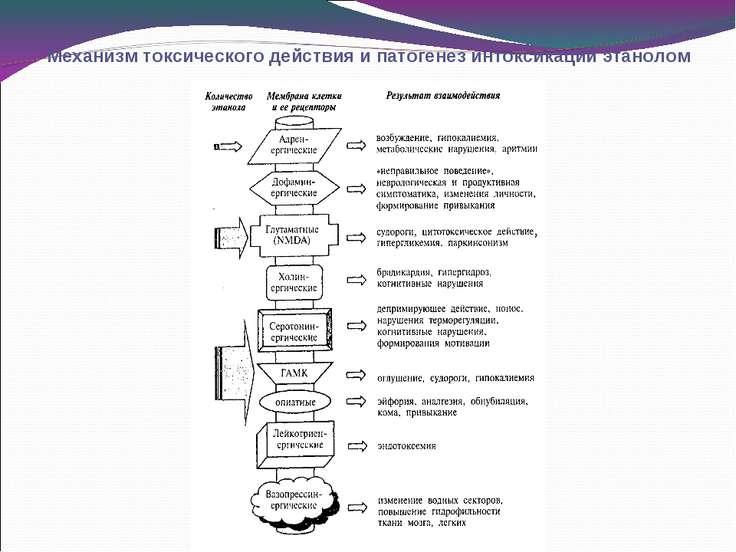 Механизм токсического действия и патогенез интоксикации этанолом