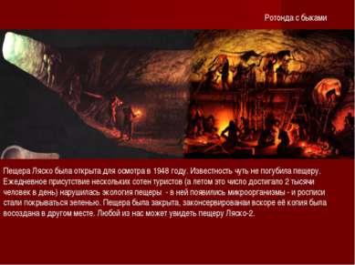 Ротонда с быками Пещера Ляско была открыта для осмотра в 1948 году. Известнос...