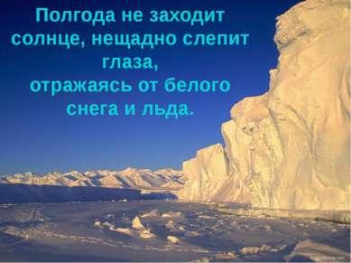 Полгода не заходит солнце, нещадно слепит глаза, отражаясь от белого снега и ...