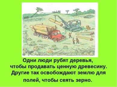 Одни люди рубят деревья, чтобы продавать ценную древесину. Другие так освобож...
